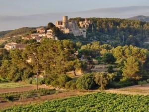 Castell_de_Castellet_(Castellet_i_la_Gornal)_-_4
